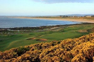 Royal Dornoch Special offer